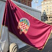 Dvadeseta obljetnica formiranja OSRH zastava 1 H G Zbor 270511 1341.jpg