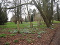 Earlham Road Cemetery Norwich 1.JPG