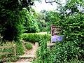 Eckington Woods (from top end of Back Lane) - geograph.org.uk - 200008.jpg