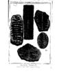 Encyclopedie volume 5-180.png
