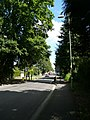 Entrance to the village centre on Portsmouth Road in Liphook, Hampshire, England 3.jpg