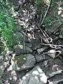 Erlengraben Erlenbach mündet R0015964.jpg