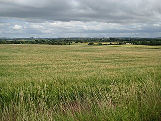 Vale of Pewsey Vale in Wiltshire, England