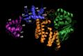 FAN1 residues 37-1009.PNG