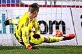 FC Admira Wacker vs. SK Rapid Wien 2015-12-02 (142).jpg