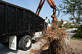FEMA - 11852 - Photograph by Mark Wolfe taken on 10-26-2004 in Florida.jpg