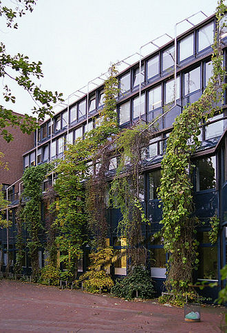 Greening - Facade greening with various supporting climbing plants on climbing aids