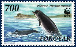 Faroe stamp 200 Hyperoodon ampullatus.jpg