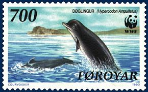 Description de l'image Faroe stamp 200 Hyperoodon ampullatus.jpg.