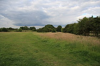 Hutton Country Park - Image: Field in Hutton Country Park geograph.org.uk 1365577