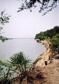 Fiume Logone a Bongor Ciad aprile 2004 img288.jpg