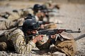 Flickr - DVIDSHUB - US, Iraqi forces train (Image 3 of 13).jpg