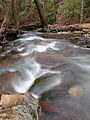 Flickr - Nicholas T - Babb Creek (3).jpg