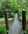 Flickr - Nicholas T - Hammersley Fork (2).jpg
