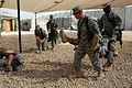 Flickr - The U.S. Army - Combat medic training.jpg