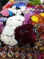 Flower Display - Mercado de Jamaica - Mexico City - Mexico - 01 (23950358667).jpg