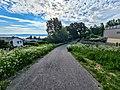 Flowery Path.jpg