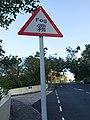 Fog Road Sign on Magazine Gap Road.jpg