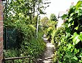 Footpath behind Butterfield Close - geograph.org.uk - 1322005.jpg
