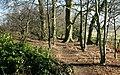 Footpath in the Hardwick Estate - geograph.org.uk - 804624.jpg