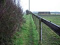 Footpath near Brinkley - geograph.org.uk - 1112689.jpg