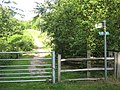 Footpath on Rowley Hill, Pembury - geograph.org.uk - 1409012.jpg