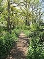Footpath to Bosham Ferry - panoramio.jpg