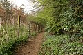 Footpath to Ellerker - geograph.org.uk - 758033.jpg