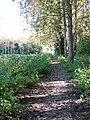 Footpath to Lamas - geograph.org.uk - 997205.jpg