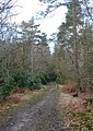 Footpath to nowhere - geograph.org.uk - 1220463.jpg