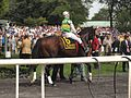 Formidable at True North Stakes.jpg
