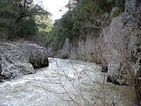 Foz de Arbayún río cerca.jpg