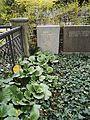 Friedhof der Dorotheenstädt. und Friedrichwerderschen Gemeinden Dorotheenstädtischer Friedhof Okt.2016 - 16 3.jpg