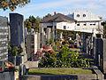 Friedhof und moderner Wohnbau.jpg