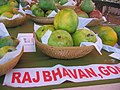 Fruit at a fruit festival in Goa 19. Mangoes.jpg