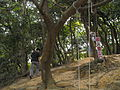 Furen Hiking Trail 02.jpg
