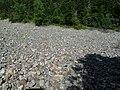 Góry Świętokrzyskie 9 - panoramio.jpg