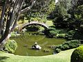 Gardenology-IMG 4955 hunt10mar.jpg