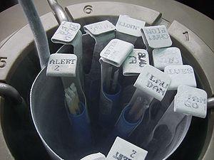 Frozen bovine semen - Ampules of frozen bovine semen in liquid nitrogen canister