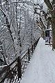 Geneve Sous la neige - 2013 - panoramio (42).jpg
