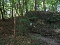 Gesprengter Westwall-Bunker im Wald beim Knielinger See - geo.hlipp.de - 2623.jpg