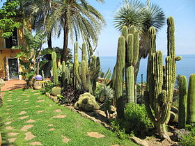Image illustrative de l'article Jardin exotique Pallanca