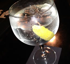 Gin and tonic - A gin and tonic with ice and lemon.