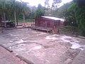 Glácil o secadero de café en Hacienda Lealtad, Lares, Puerto Rico.jpg