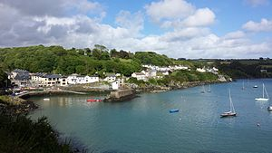 Glandore - The village of Glandore to include the pier at the base of the village. Main access point for sailors making entry to land.
