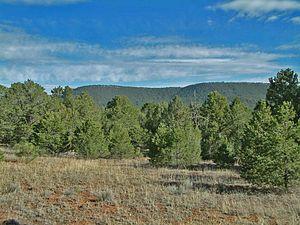 Glorietta Pass, New Mexico, USA, 2012.jpg