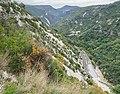 Gorges de la Vis (3).jpg