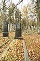 Gravestones at Jewish Cemetery in Dřevíkov, Chrudim District 01.JPG