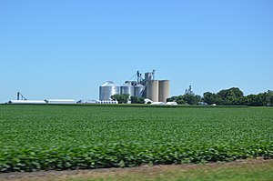 Rooks Creek Township, Livingston County, Illinois - Fields southwest of Graymont