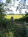 Great Ouse meadows - Olney - geograph.org.uk - 195510.jpg